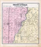 Orono and Cedar Townships, Port Allen, Conesville, Muscatine County 1874